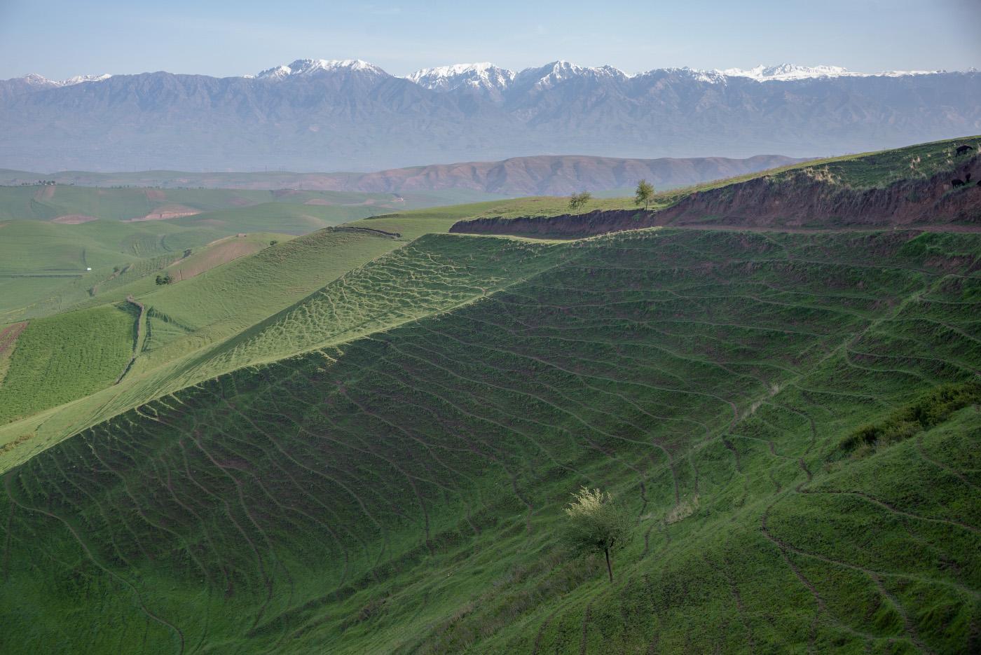 . Таджикістан
