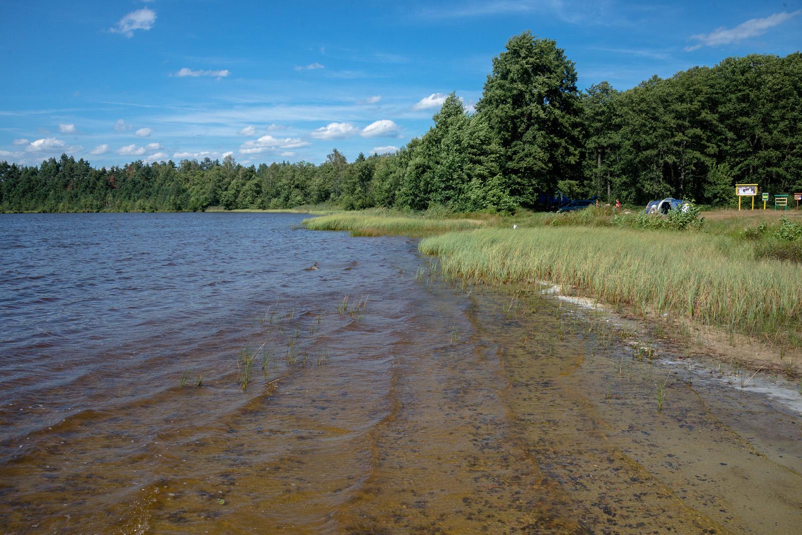 Озеро Охнич(Охниче). Волинська область, Маневицький район